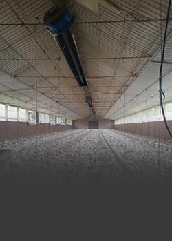 گرمایش سالنهای مرغداری
